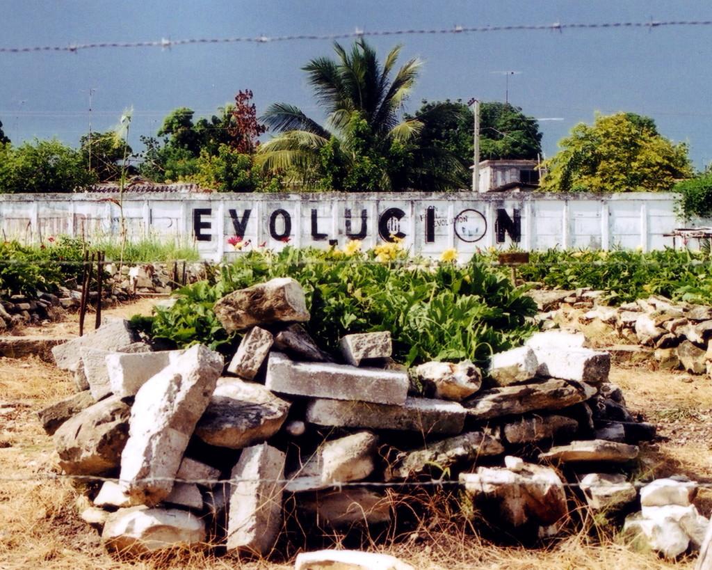evolucion_2